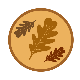 Leaf Collection Update: Services Continuing in to Next Week